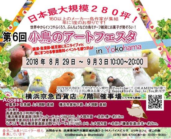 小鳥のアートフェスタin横浜2018が京急百貨店で開催!SKE48高柳明音や町あかりも登場