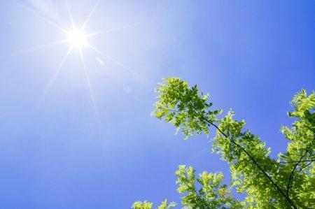 猛暑・酷暑でとても暑い夏の日々