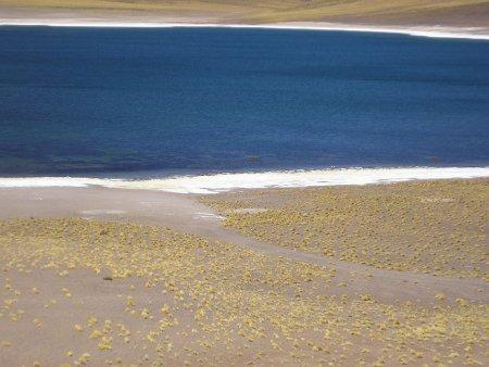 南米チリのアタカマ砂漠にできた湖