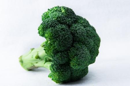 ブロッコリーはインコに与えてOKな野菜?危険性を指摘する獣医師も