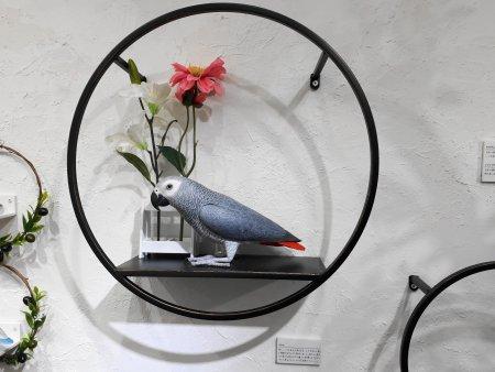 「ゆかいな木彫りのインコたち」のヨウムの木彫り