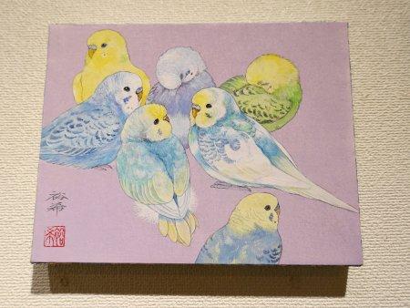 新保裕希さんによる色々なカラーのセキセイインコの日本画