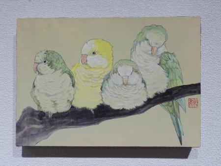 新保裕希さんによるオキナインコの日本画