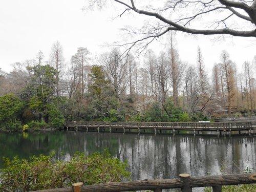 東京の吉祥寺にある井の頭公園の風景