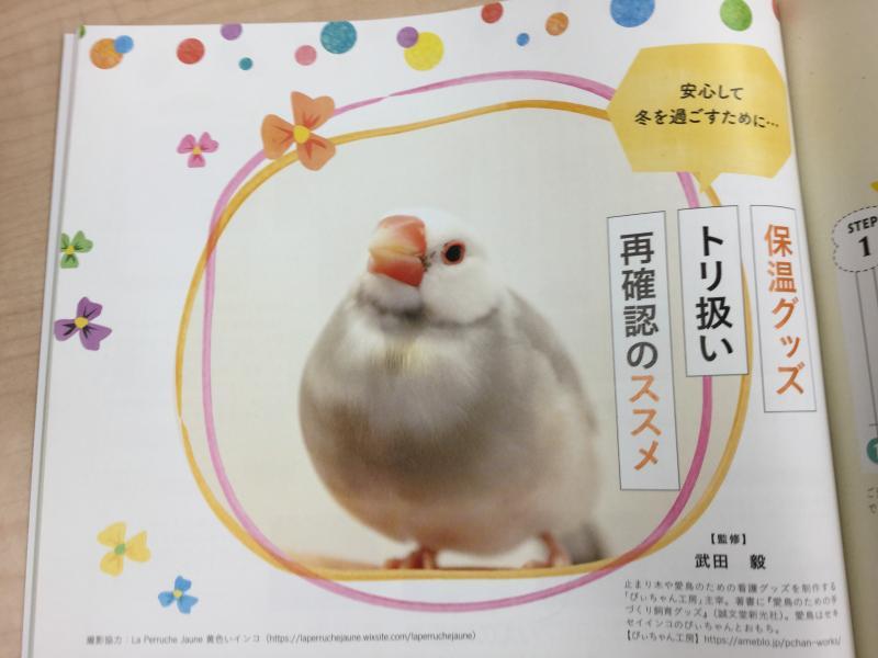 鳥ぐらし「保温器具の取り扱い(トリ扱い)再確認のススメ」はピーちゃん工房の武田毅さん監修