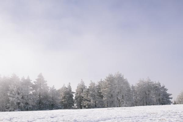 冬の季節は外の気温と室温の温度差が激しいため、日光浴はオススメできない