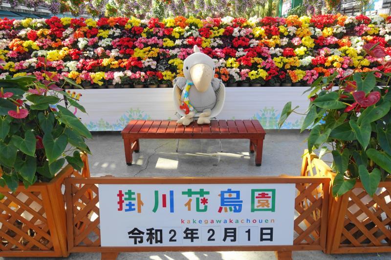 掛川花鳥園の記念フォトスポットでハシビロコウぬいぐるみがお出迎え