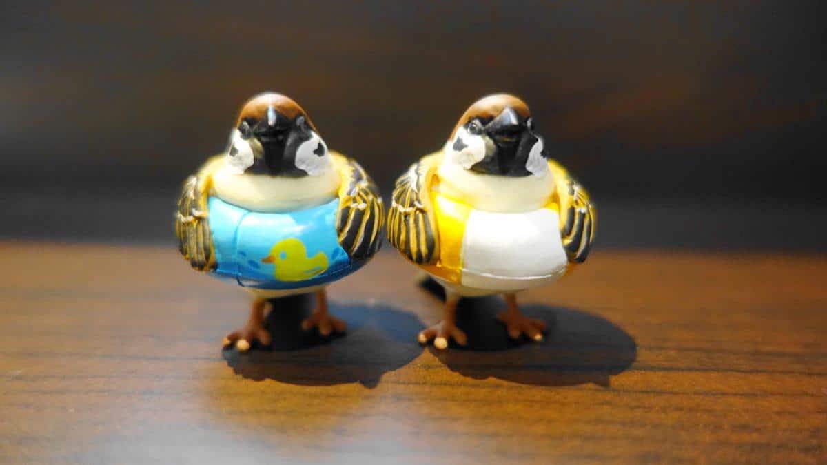 鳥ガチャ「ことりの休日 浮き輪スズメ」のアヒルちゃんとストリート(黄色)の2種類