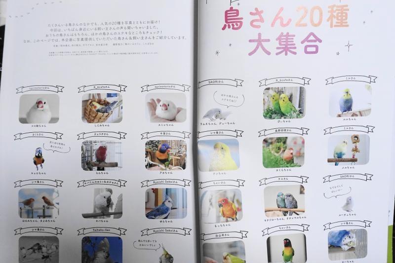 特集では20種類のインコやオウム、文鳥などのコンパニオンバードが紹介