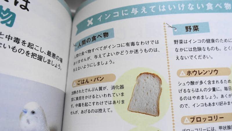 はじめてのインコ飼い方・育て方の飼育本で、インコが食べてはいけない食べ物として、パンとごはんが紹介