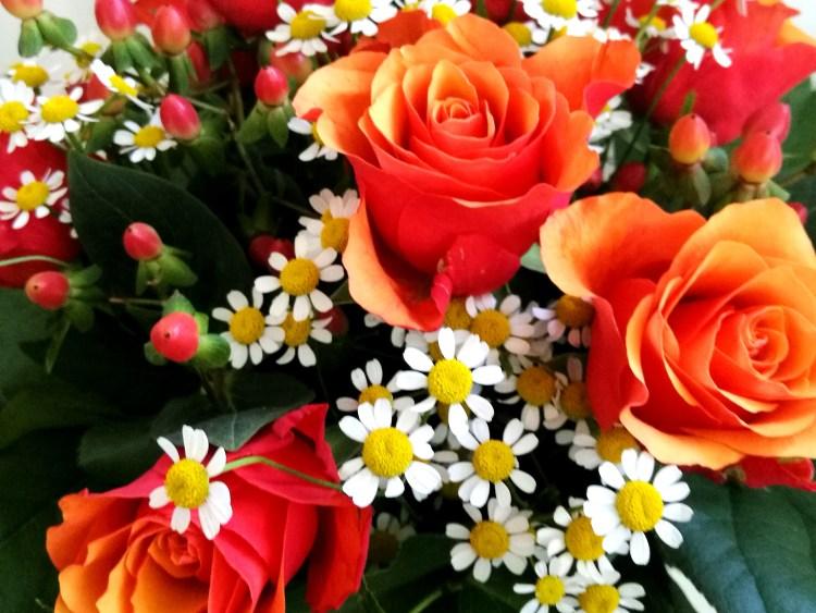 Romance_Blumen_5.jpg