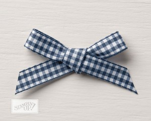 Gingham Ribbon in Night of Navy