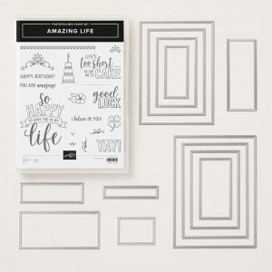 The Amazing Life Bundle includes the stamp set and coordinating Rectangle Stitched Framelits
