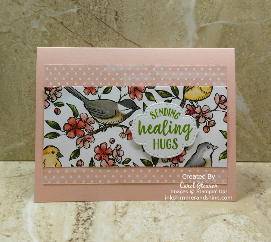 Get Well card - Sending Healing Hugs and lots of birdies with the Bird Ballad beautiful designer series paper from Stampin' Up!