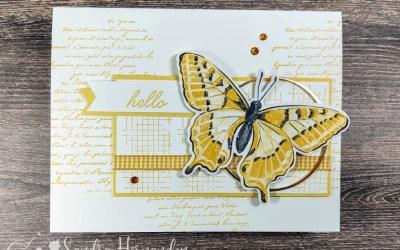 Monochromatic Butterfly Card