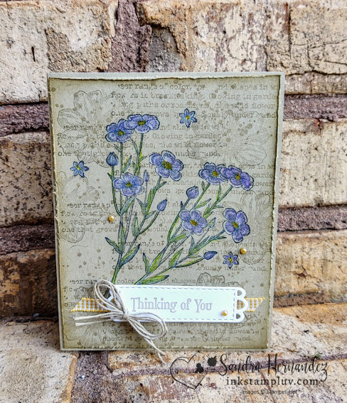 Quiet Meadow Stamp SEt with Water Color Pencils
