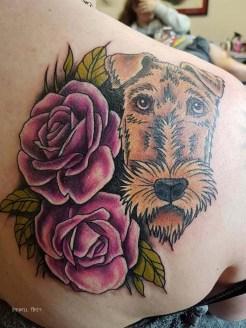 Rachel dog
