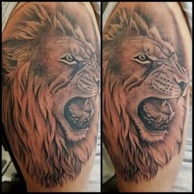 rachel lion top arm