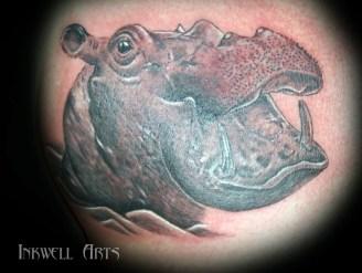 Hippo 300