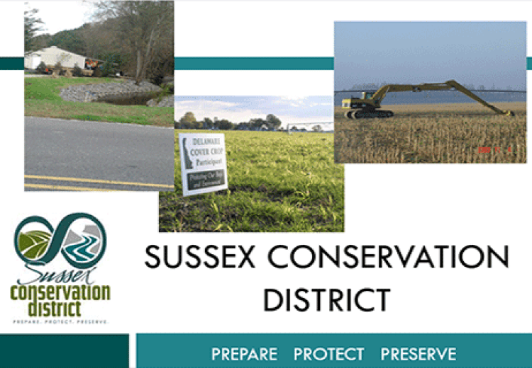 """Sussex Conservation District Addresses the """"Cover Crop"""" Issue"""