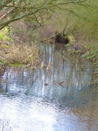 The Scow Brook...