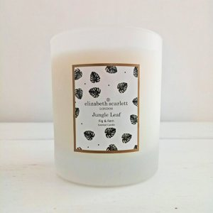 Jungle Leaf Fig & Fern Classic Candle