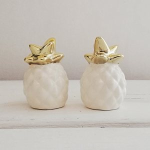Salt and Pepper Pineapple Set