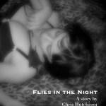 Flies in the Night