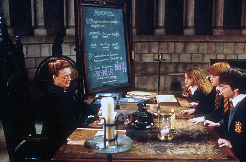 Transfiguration chalkboards  Harry Potter Hogwarts Party