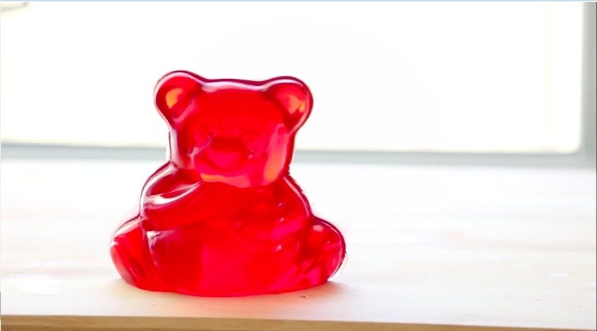 Willy Wonka Series Giant Gummy Bears  In Literature