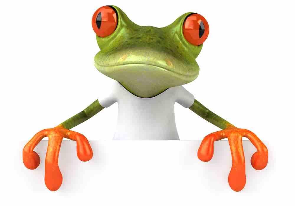 frog into prince