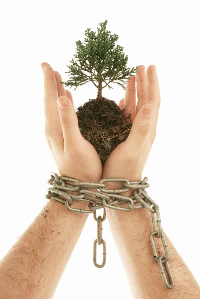 hands-tree-chains