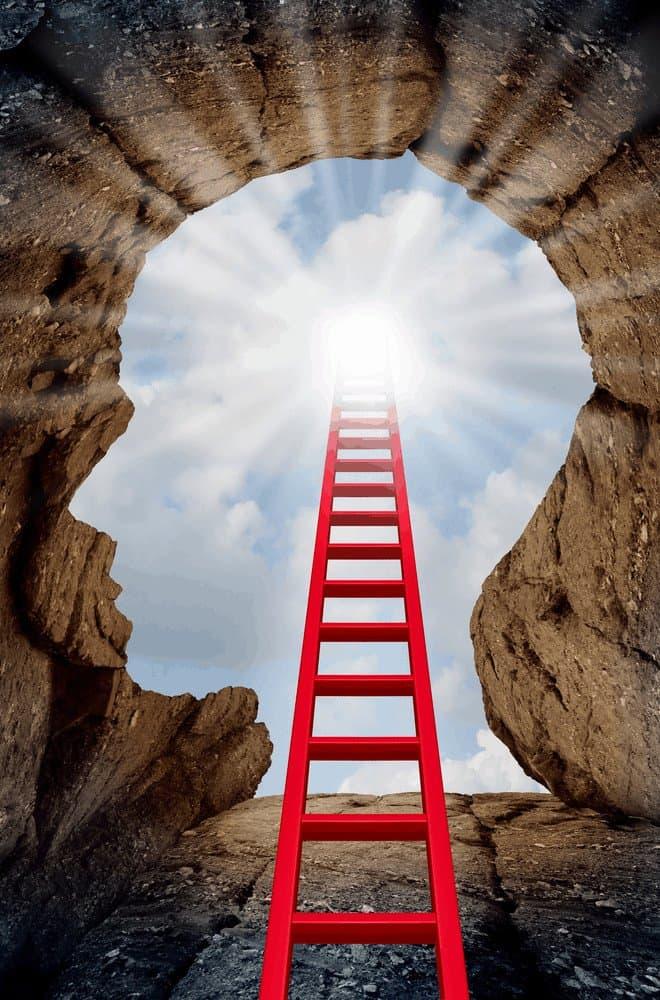 executive coaching - climb the ladder to success