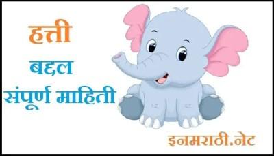 ELEPHANT-INFORMATION-IN-MARATHI