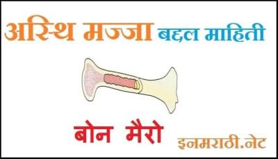 bone-marrow-information-in-marathi
