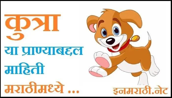 dog-information-in-marathi