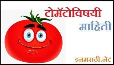 tomato-information-in-marathi
