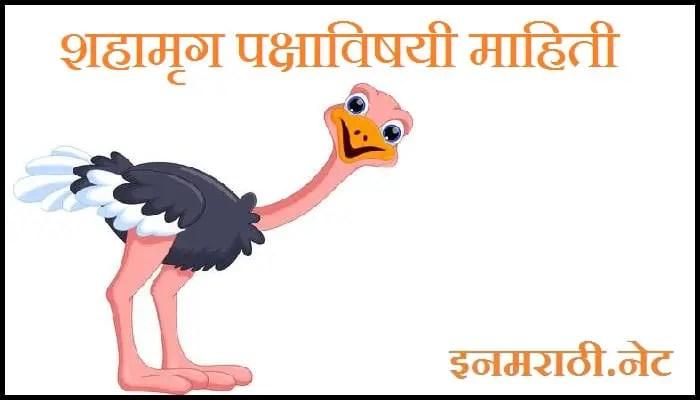 ostrich information in marathi