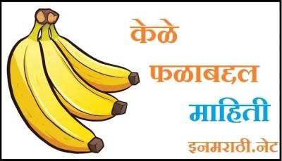 banana information in marathi