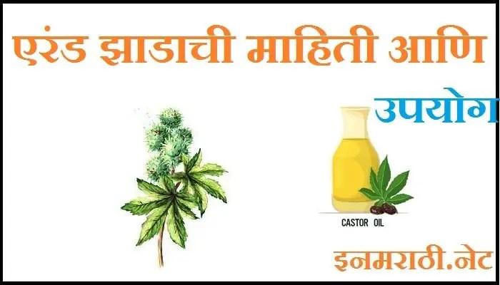 castor oil benefits in marathi