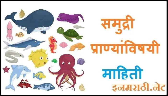 sea animals information in marathi