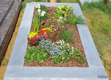 Salon De Jardin En Bois Gamm Vert | Salon De Jardin Alinea 2015