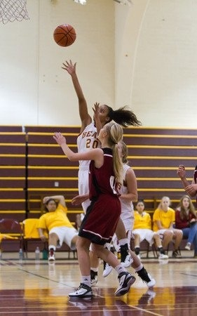 Court Roache_basketball player