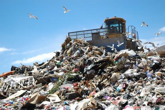 plastic bags in landfill