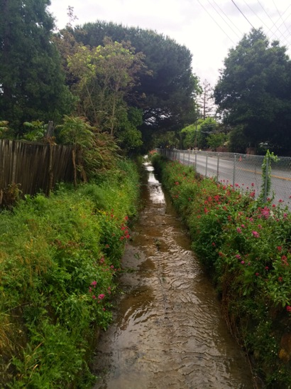 Marsh road ditch post rain