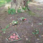 Kunst in het bos