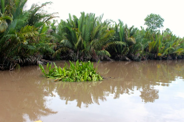 sekonyer river 2