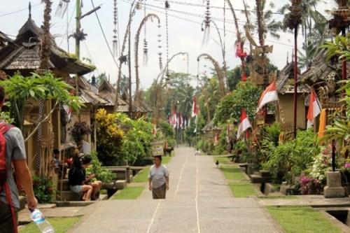 typical balinese village