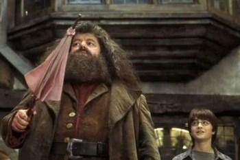 「海格的粉色小洋傘藏著什麼秘密?」一切要從他被「霍格華茲開除」說起!—《哈利波特》—我們用電影寫日記
