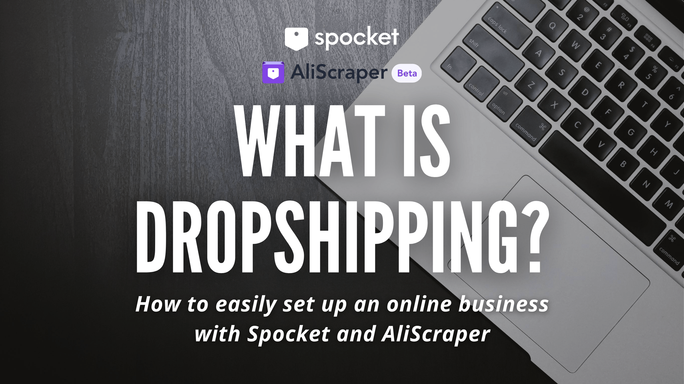 dropshipping spocket aliscraper